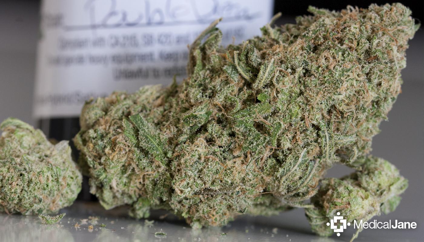 Double Dream Marijuana Strain