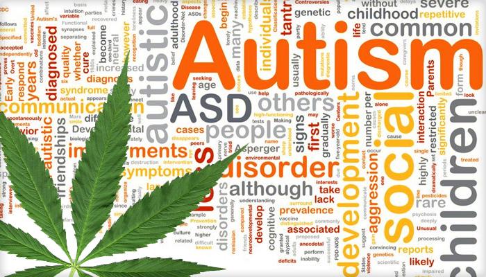 Medical Marijuana in the Management of Autism