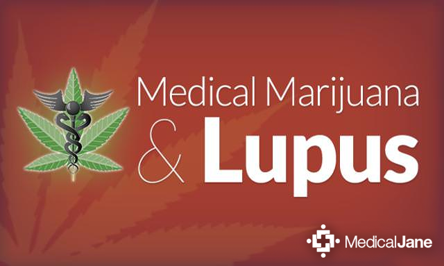 Medical Marijuana and Lupus: What You Need to Know