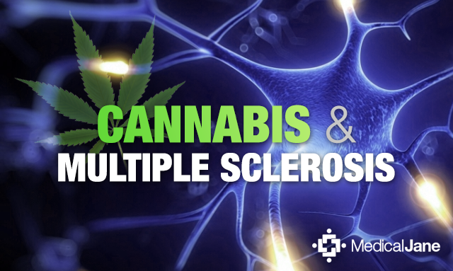Smoking Medical Marijuana Can Decrease Pain From Multiple Sclerosis (MS)