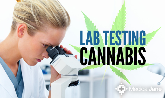 Lab-Testing Cannabis: What You Should Know