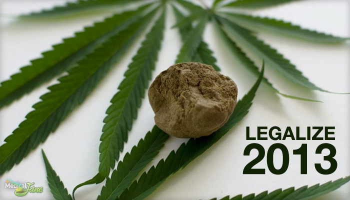 New Legalization Measures Introduced at the Federal Level in 2013