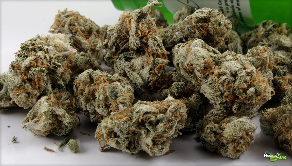Weed Strains - Legit Bud Traders