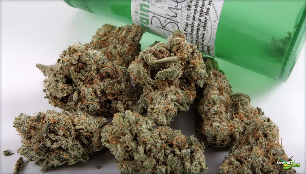 Blue Crack Marijuana Strain