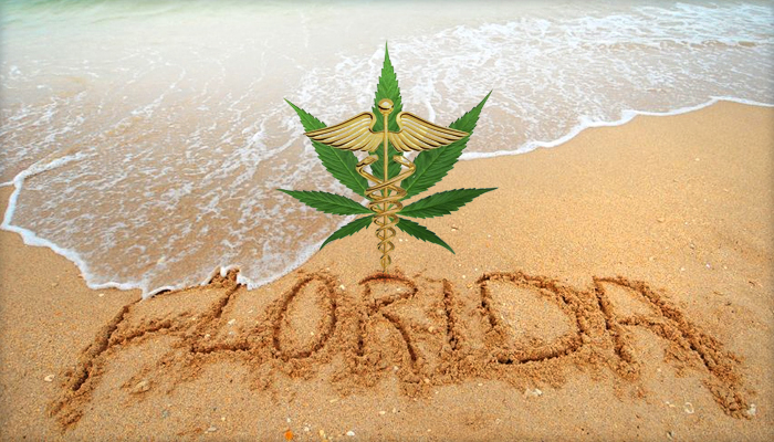 Florida Begins Collecting Signatures For MMJ Bill