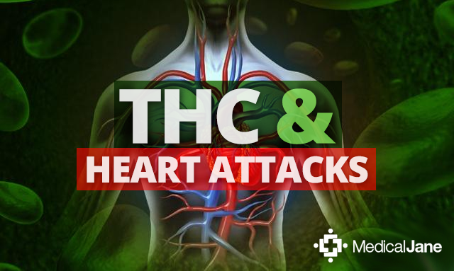 Study Shows THC May Limit Damage Caused By Heart Attack