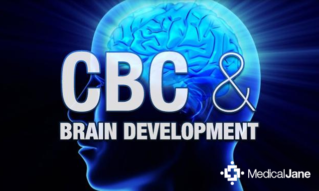 Study: Cannabichromene (CBC) May Aid In Brain Development