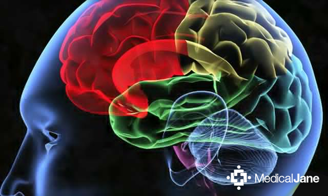Study: Cannabidiol (CBD) May Help to Prevent or Treat Neurodegenerative Diseases