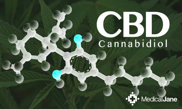 Study: Cannabidiol (CBD) May Protect Neurons In Brain