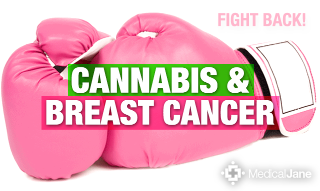 Medical Marijuana May Treat Aggressive Forms Of Breast Cancer