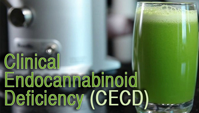 Cannabinoid Deficiency May Explain A Variety Of Health Conditions