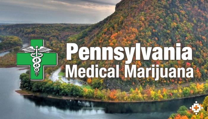 Pennsylvania Senators Plan To Introduce Medical Marijuana Bill