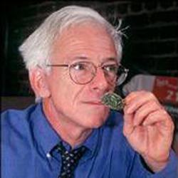 Portrait for Dennis Peron