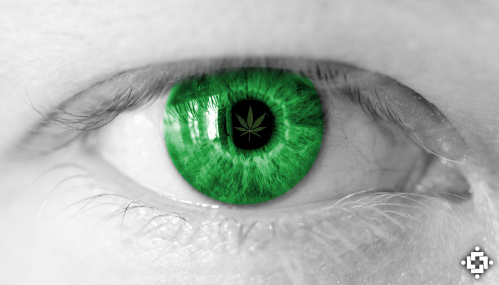 Study Shows THC In Cannabis May Help Delay Retinal Degeneration, Vision Loss