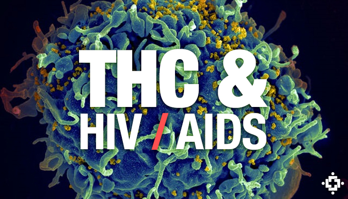Study: Tetrahydrocannabinol (THC) May Inhibit The Progression Of HIV / AIDS