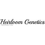 Logo for Heirloom Genetics Delivery