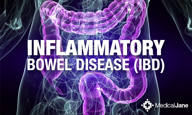 THC May Help To Reduce Damage In Patients With Inflammatory Bowel Disease (IBD)