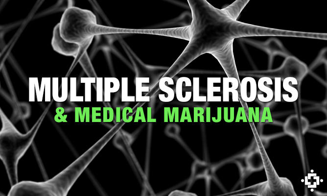 Cannabis-Based Medicine For Patients Living With Multiple Sclerosis