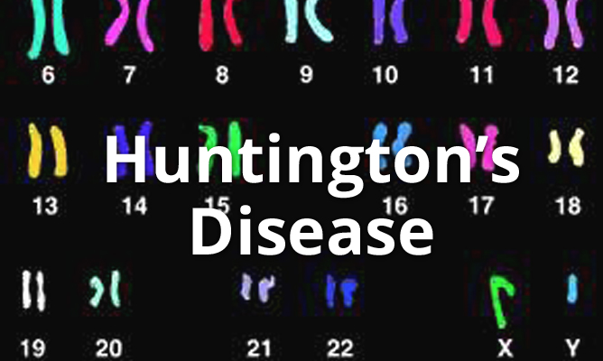 An Overview of Huntington's Disease and Cannabis