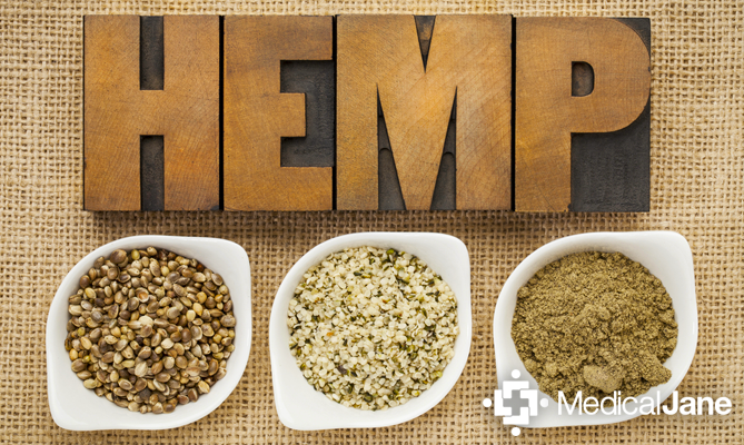 What Is Hemp? Understanding The Differences Between Hemp and Cannabis
