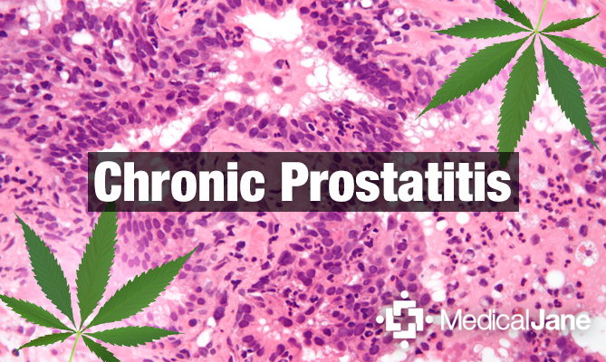 Survey Study: Cannabis Use for Chronic Pelvic Pain Syndrome in Males