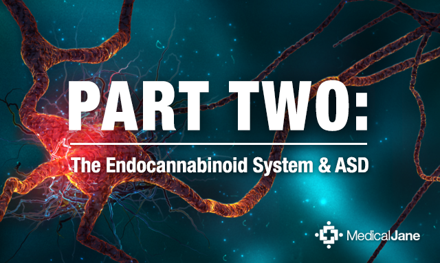 Part Two: The Role of Phytocannabinoids in ASD Therapy