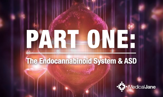 Part One: The Endocannabinoid System and Autism Spectrum Disorder (ASD)