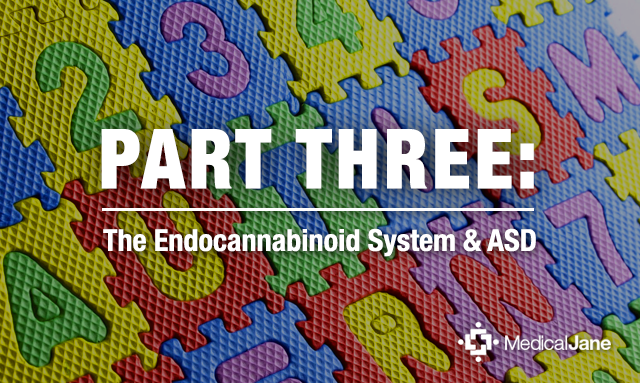 Part Three: Practical Approach to Cannabis Based ASD Therapies