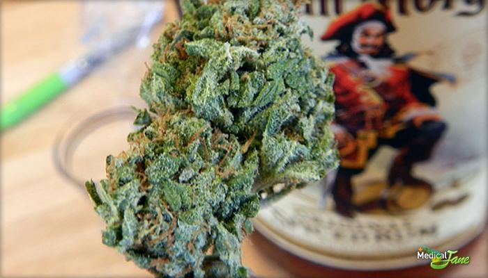 Pineapple Wreck Marijuana Strain