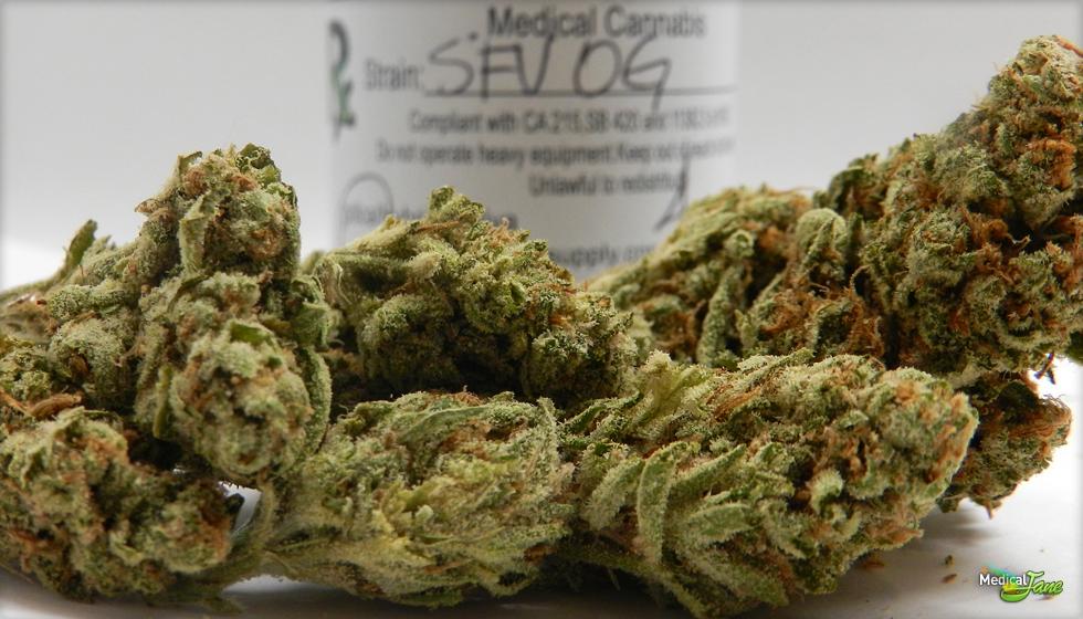SFV OG Kush Marijuana Strain