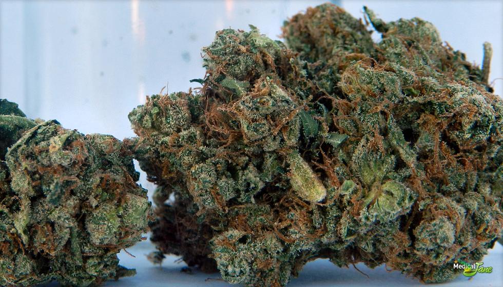 777 OG Marijuana Strain