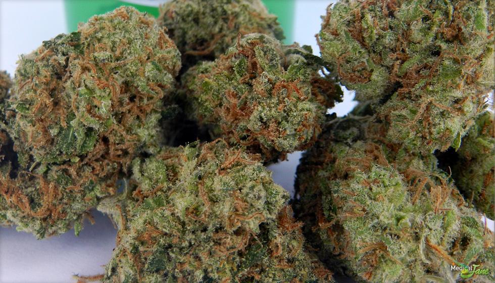 Cherry AK47 Marijuana Strain