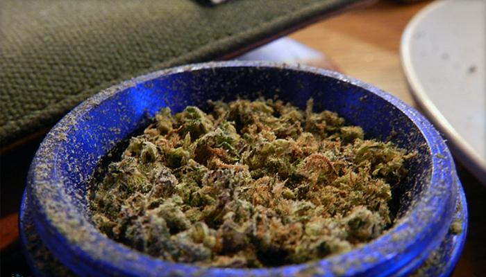 Red Congolese Marijuana Strain