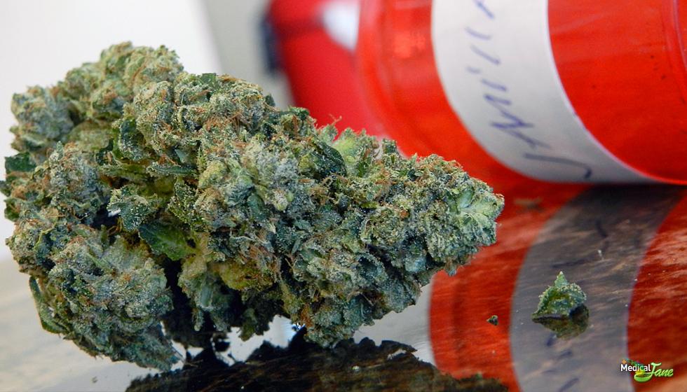 Vanilla OG Marijuana Strain