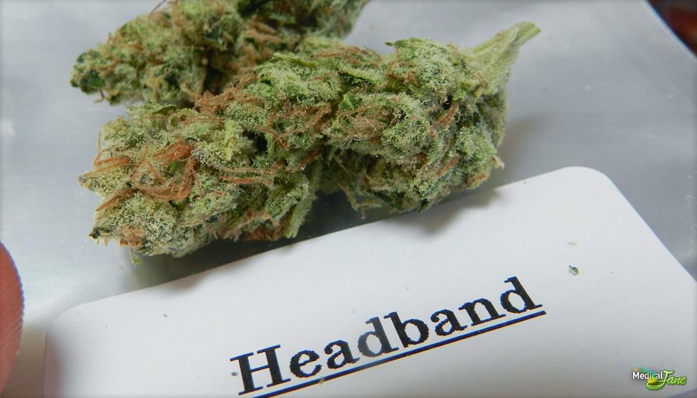Headband Marijuana Strain