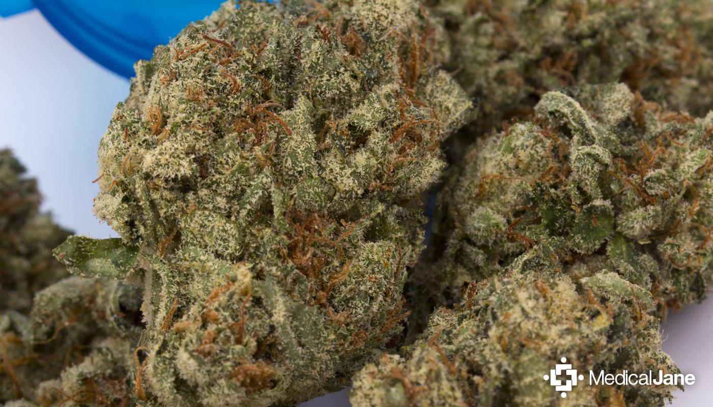 Mars OG Marijuana Strain