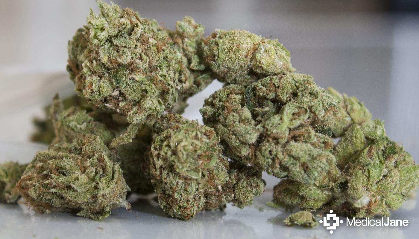 Tahoe OG Marijuana Strain