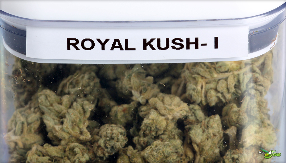 Royal Kush Marijuana Strain