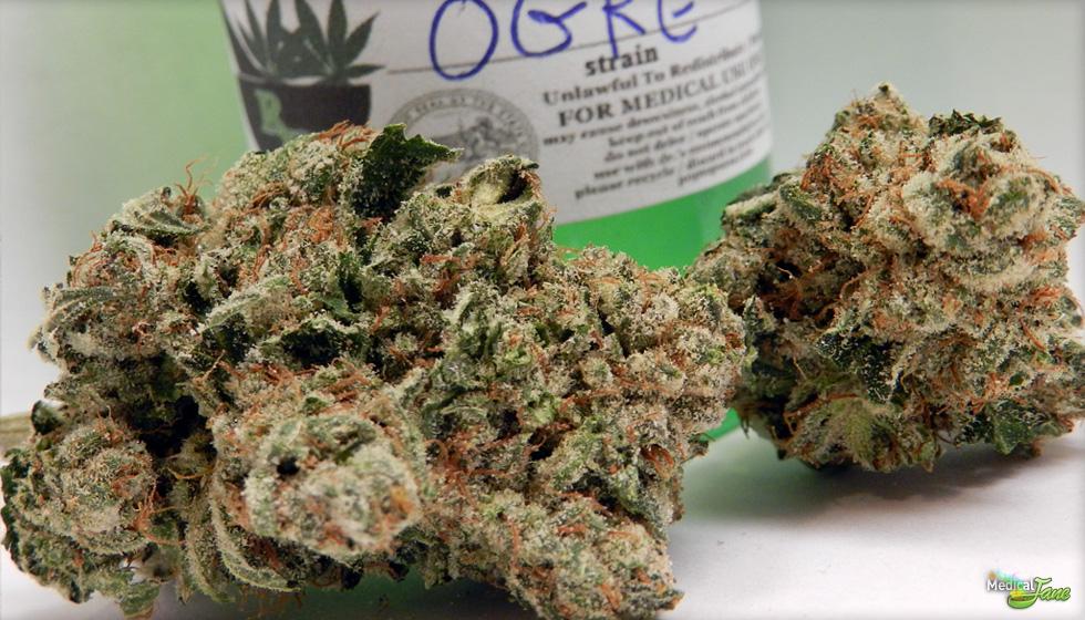 Ogre Marijuana Strain