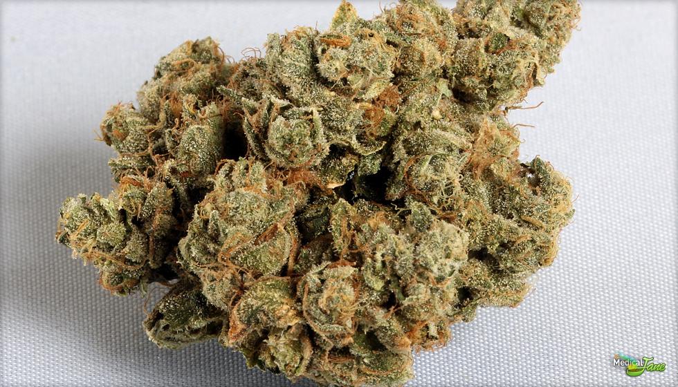 Flint OG Marijuana Strain