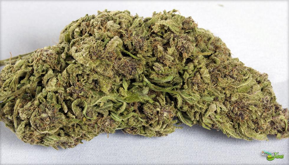 Jah Goo Marijuana Strain