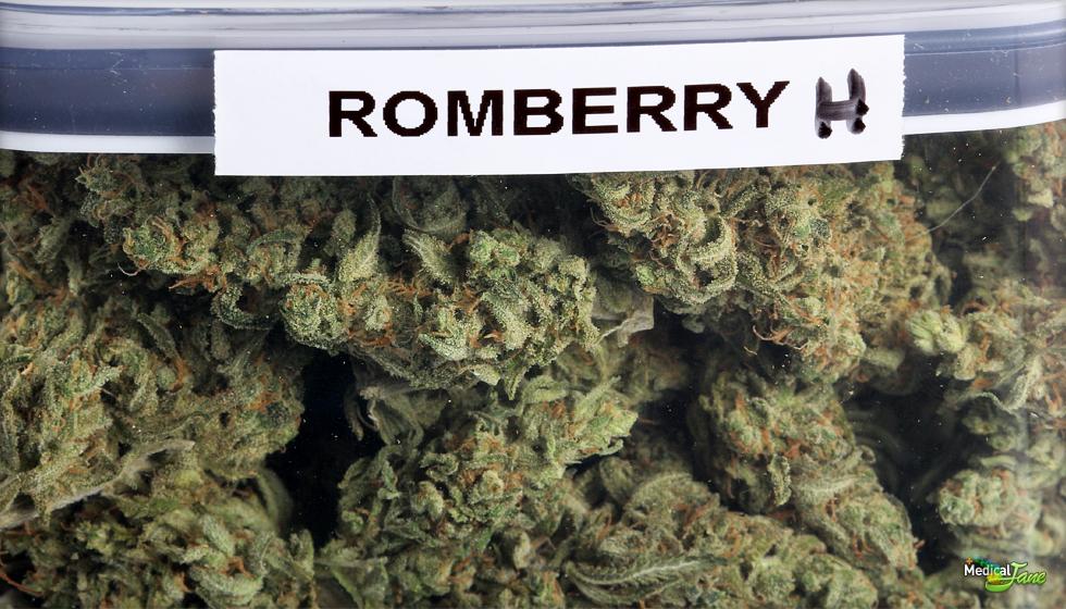 Romberry Marijuana Strain