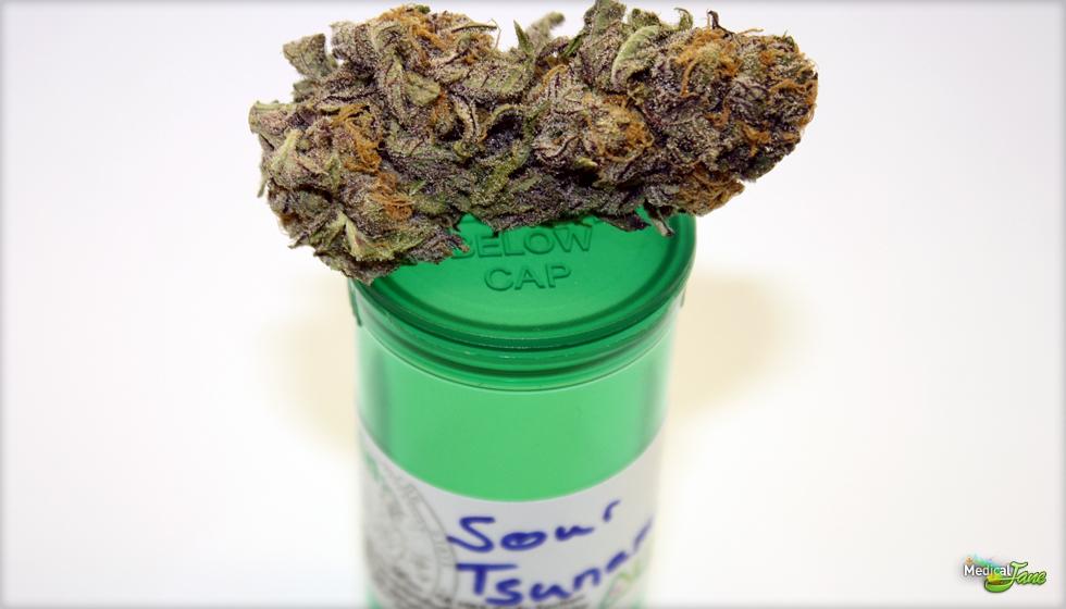 Sour Tsunami Marijuana Strain