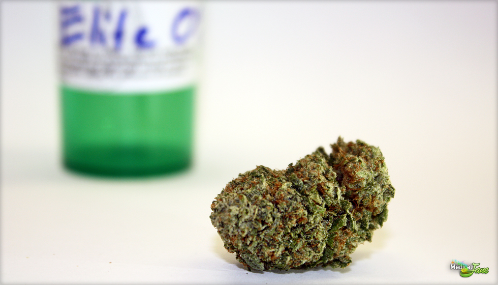 Elite OG Marijuana Strain
