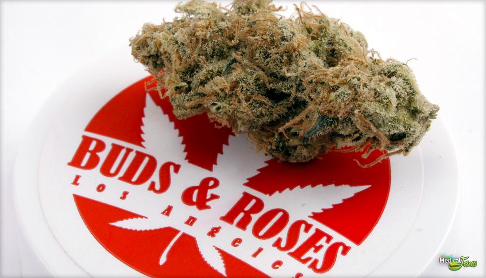 Tange  Marijuana Strain