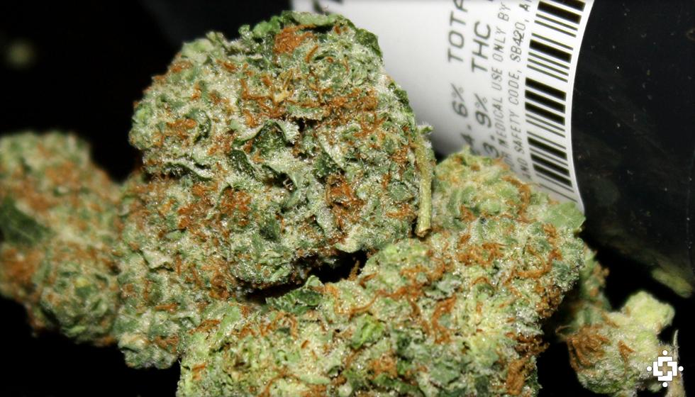 Cherry OG Marijuana Strain