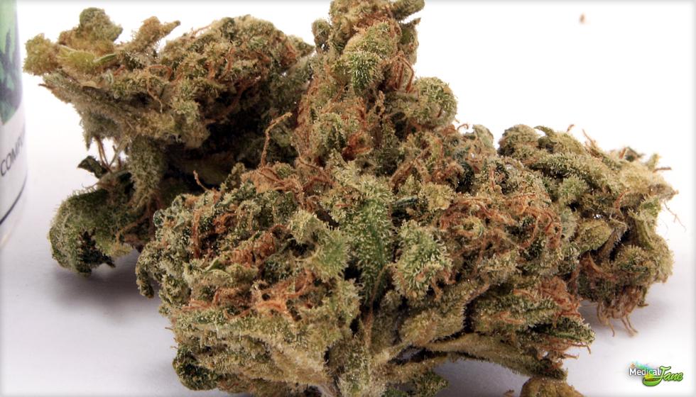 Green Diamond Marijuana Strain