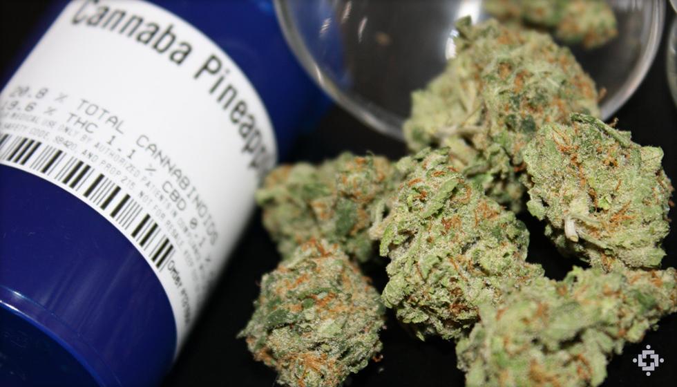 Pineapple Express Marijuana Strain