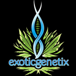 Logo for Exotic Genetix