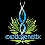 Logo for Exotic Genetix